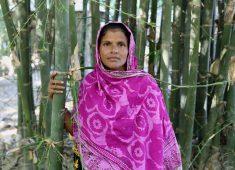 Frau aus Bangladesch vor Bambuspflanzen