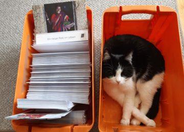 Aussendungsmaterial und Katze in Postversandbox